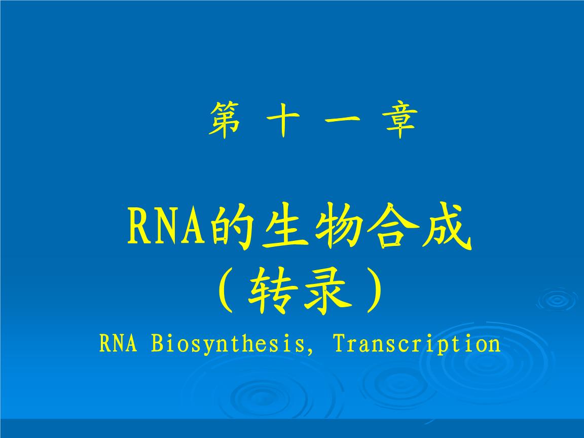 生物化学第11章RNA的生物合成(转录).PPT