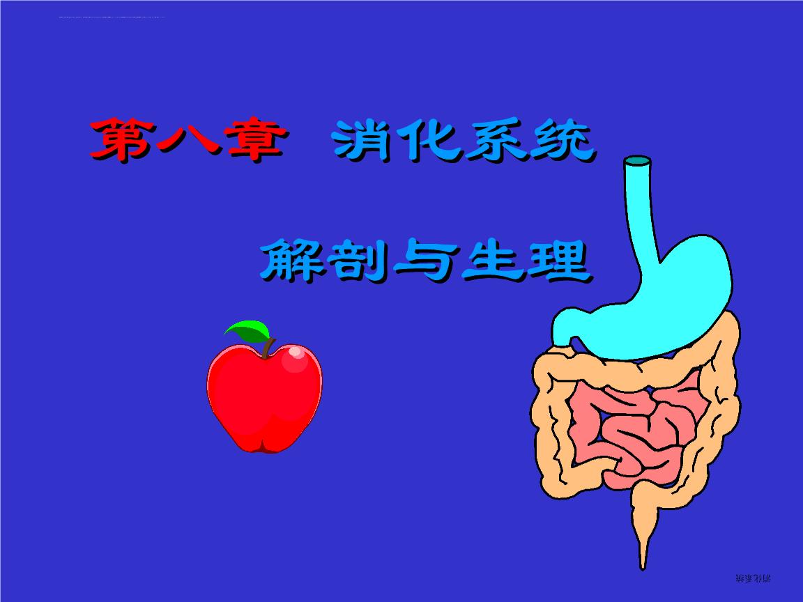 (李罡)第七章_消化系统解剖与生理ppt课件.ppt图片