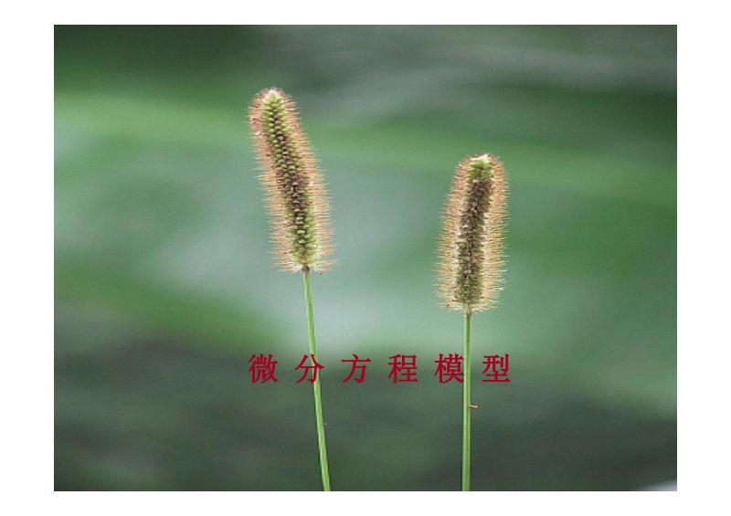 lesson8(动态微分方程模型).pdf