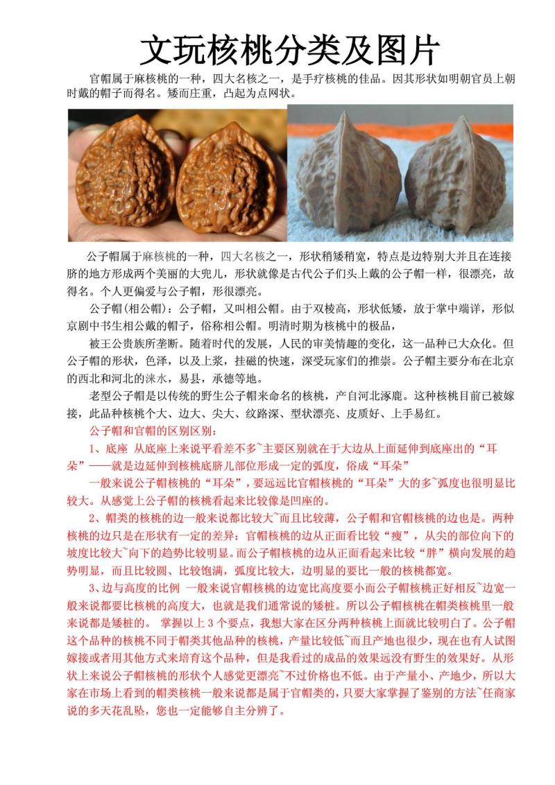 文玩核桃之分类及图片.pdf