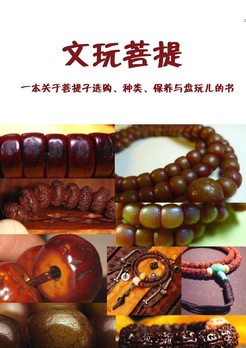 文玩菩提(一本关于菩提子选购、种类、保养与盘玩儿的书).pdf