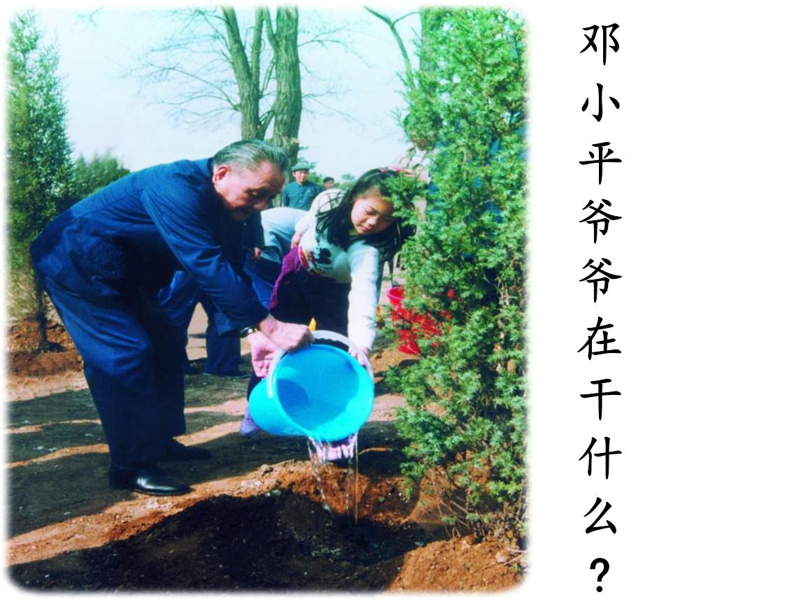 部编二年级下3邓小平爷爷植树.ppt印度新娘教程发型图片