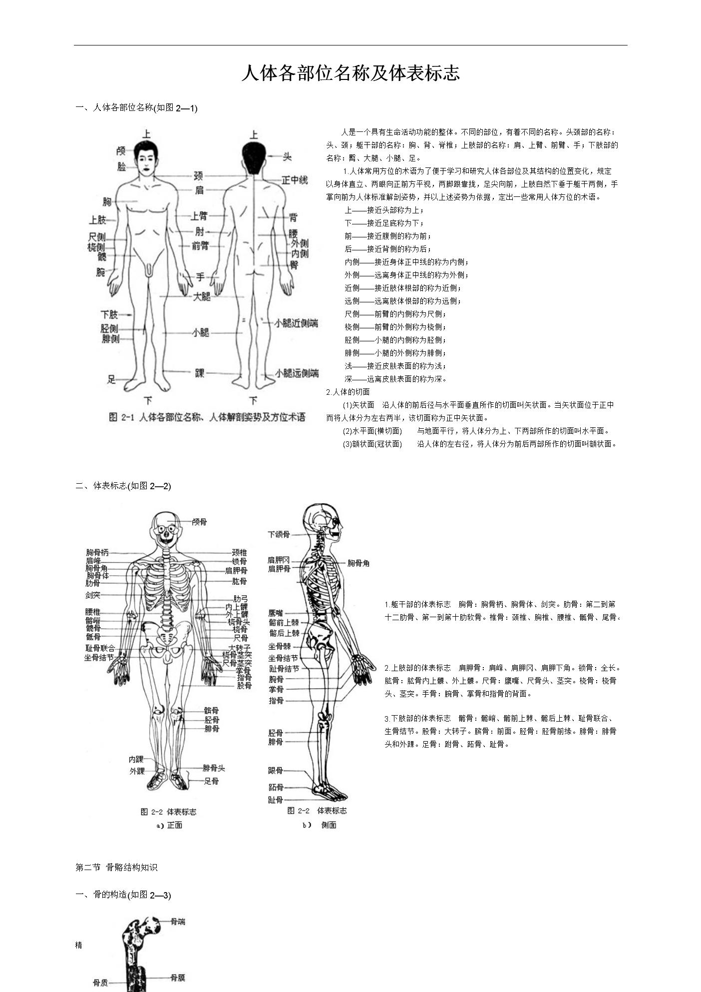 人体部位名称大全固)�_人体各部位名称及体表标志总结.doc