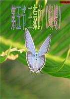 《第五节 王蒙的《蝴蝶》.ppt》