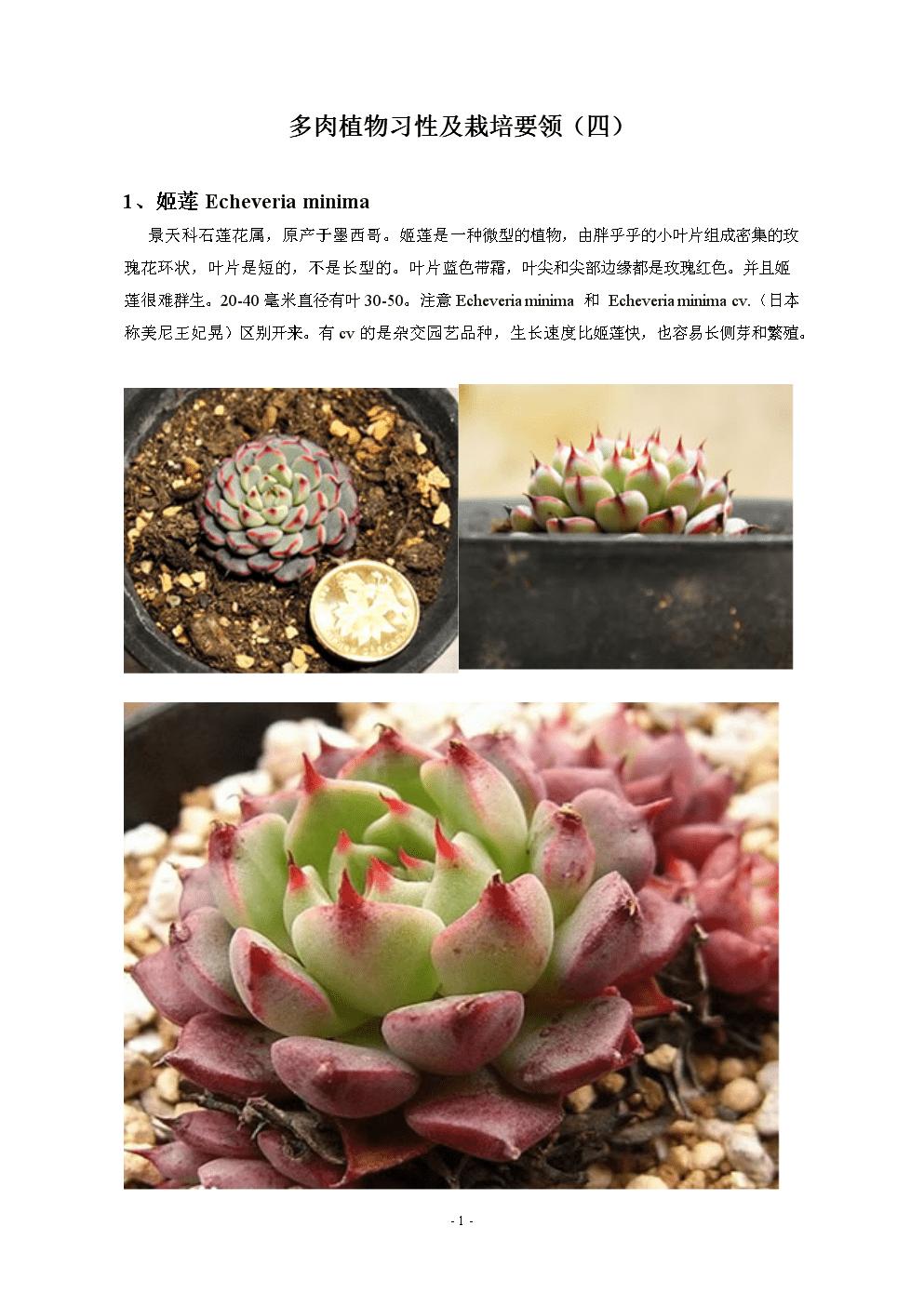 多肉植物习性及栽培要领(四).doc