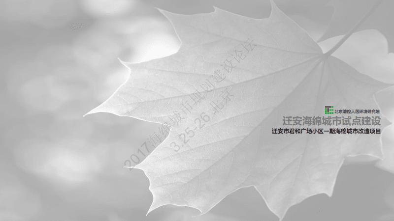 王欣:迁安市君和广场小区一期海绵城市改造项目.pdf