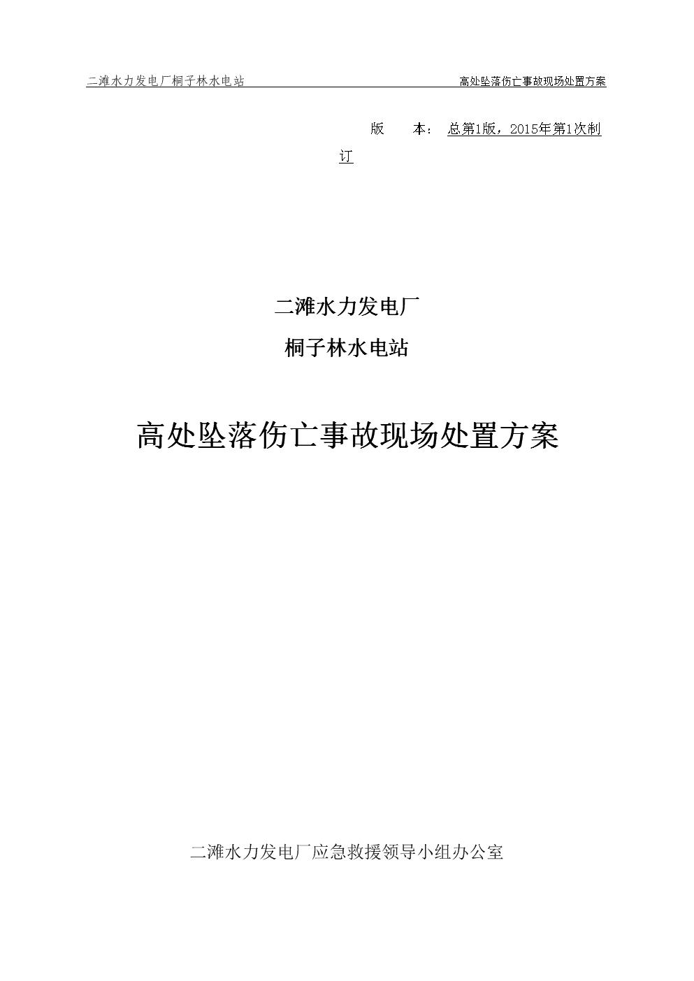 01-桐子林水电站高处坠落伤亡事故现场处置方案.doc