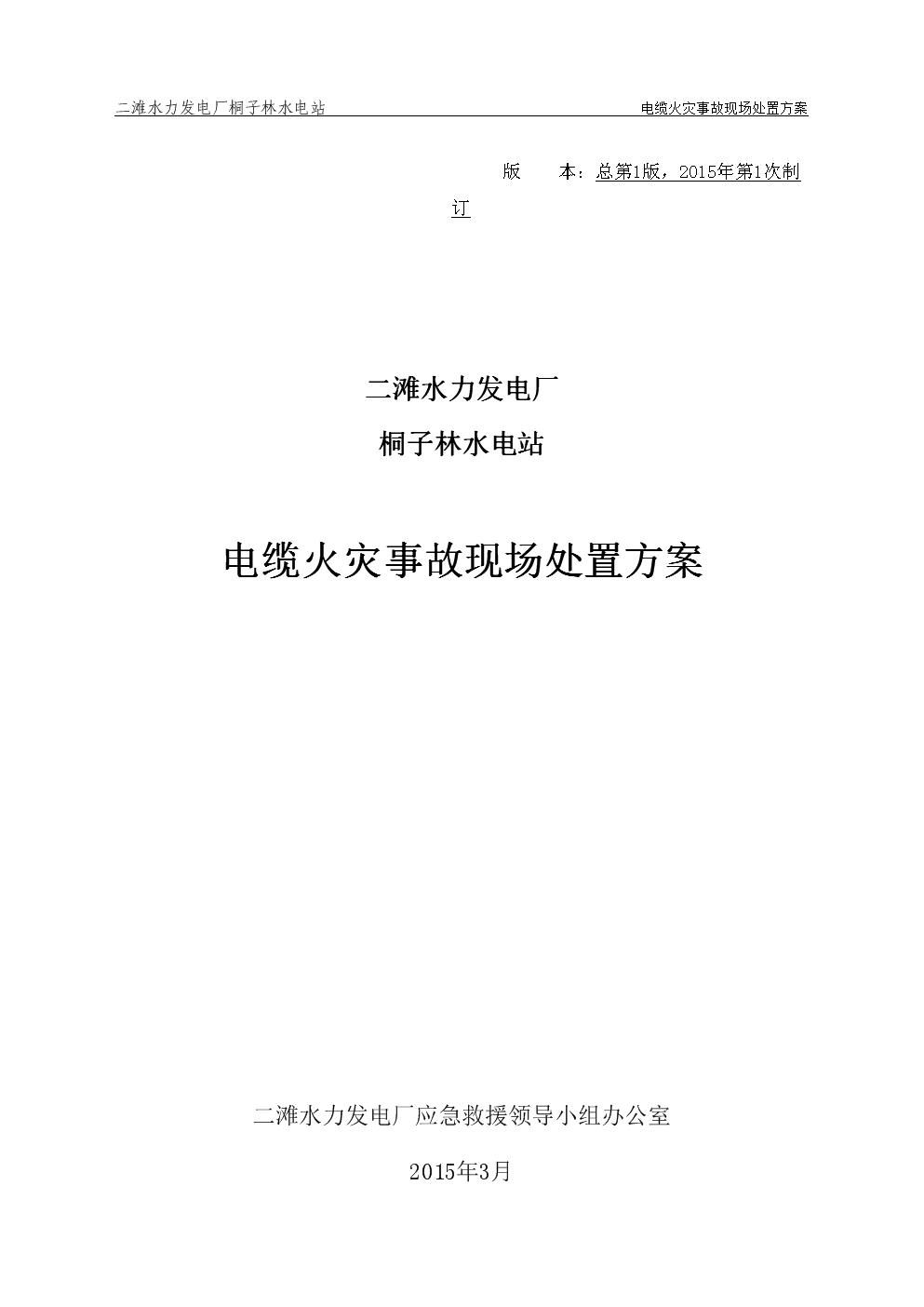 19-桐子林水电站电缆火灾事故现场处置方案.docx
