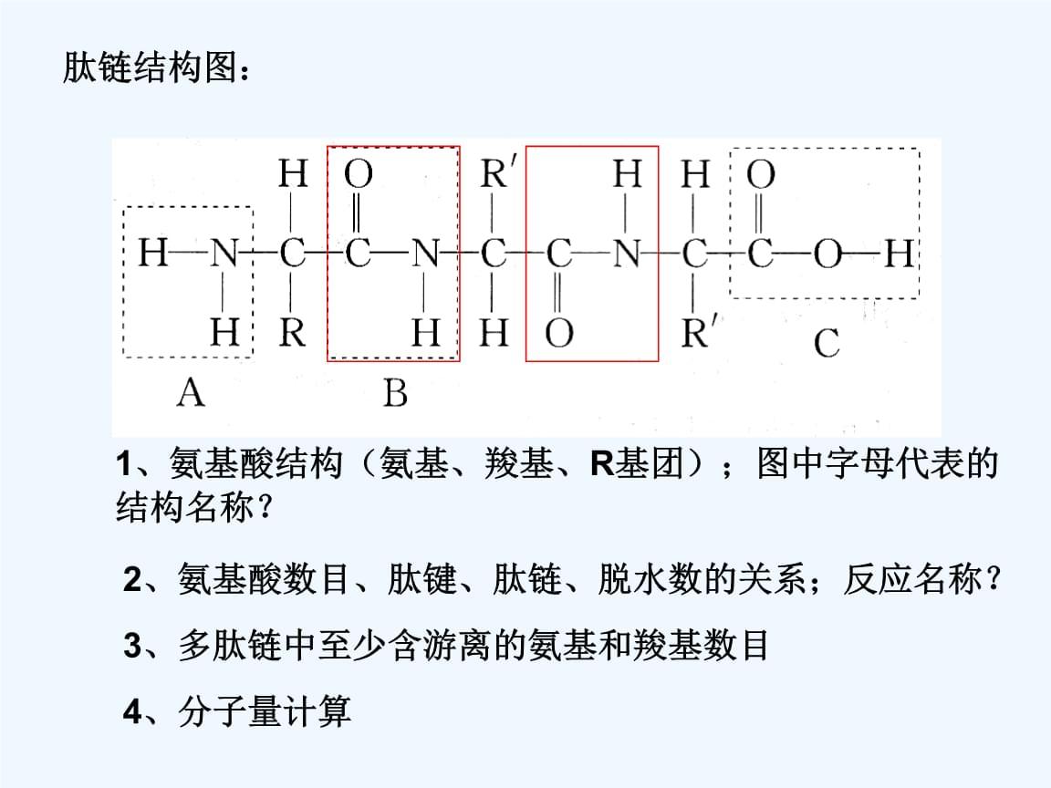 高中生物复习知识(学考).ppt