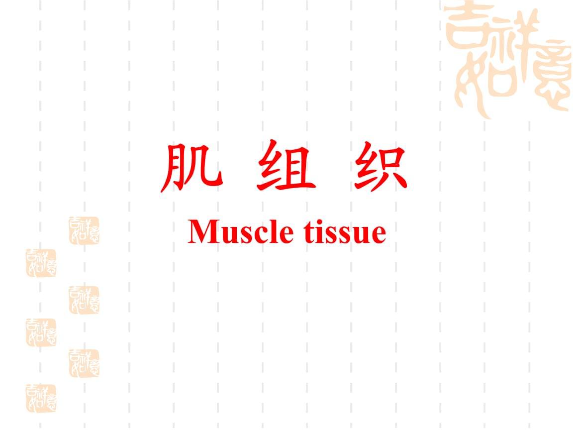 组织胚胎学-肌组织(水产).ppt