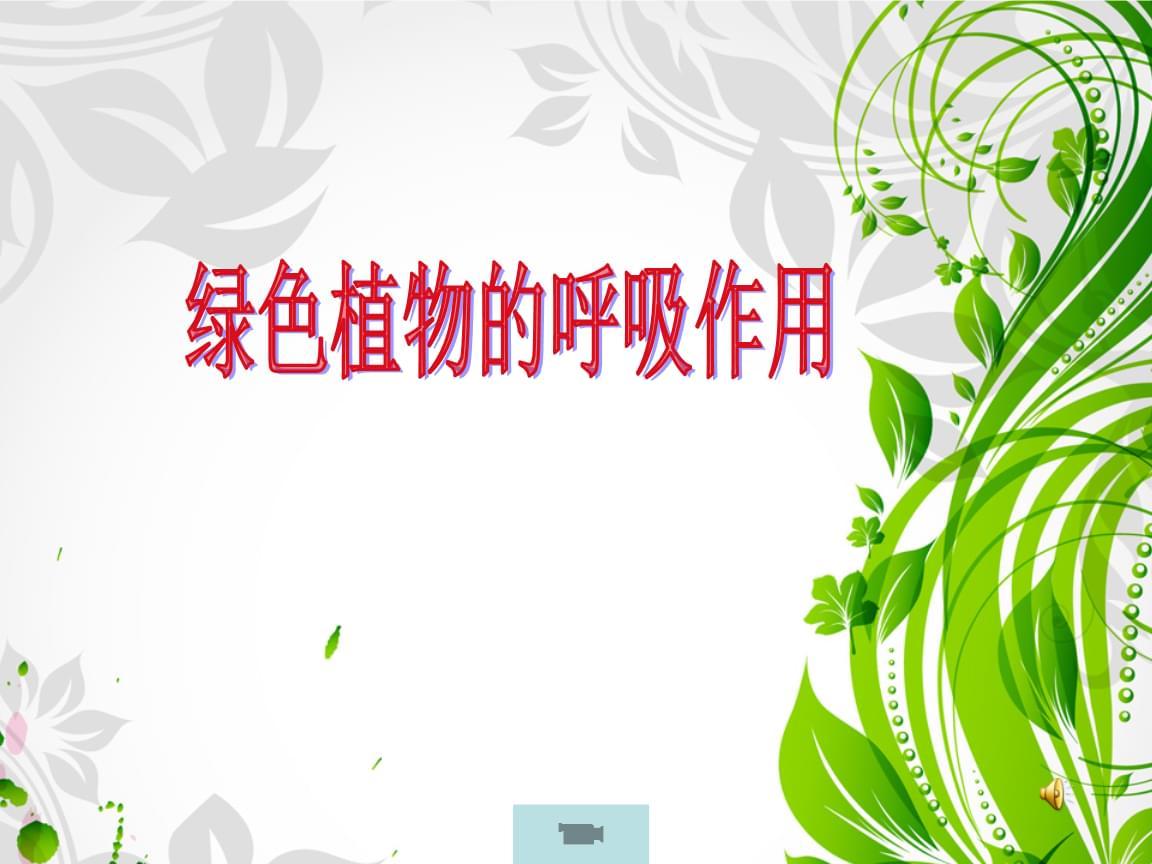 人教版七年级生物上册第三单元第5章第2节绿色植物的呼吸作用.ppt