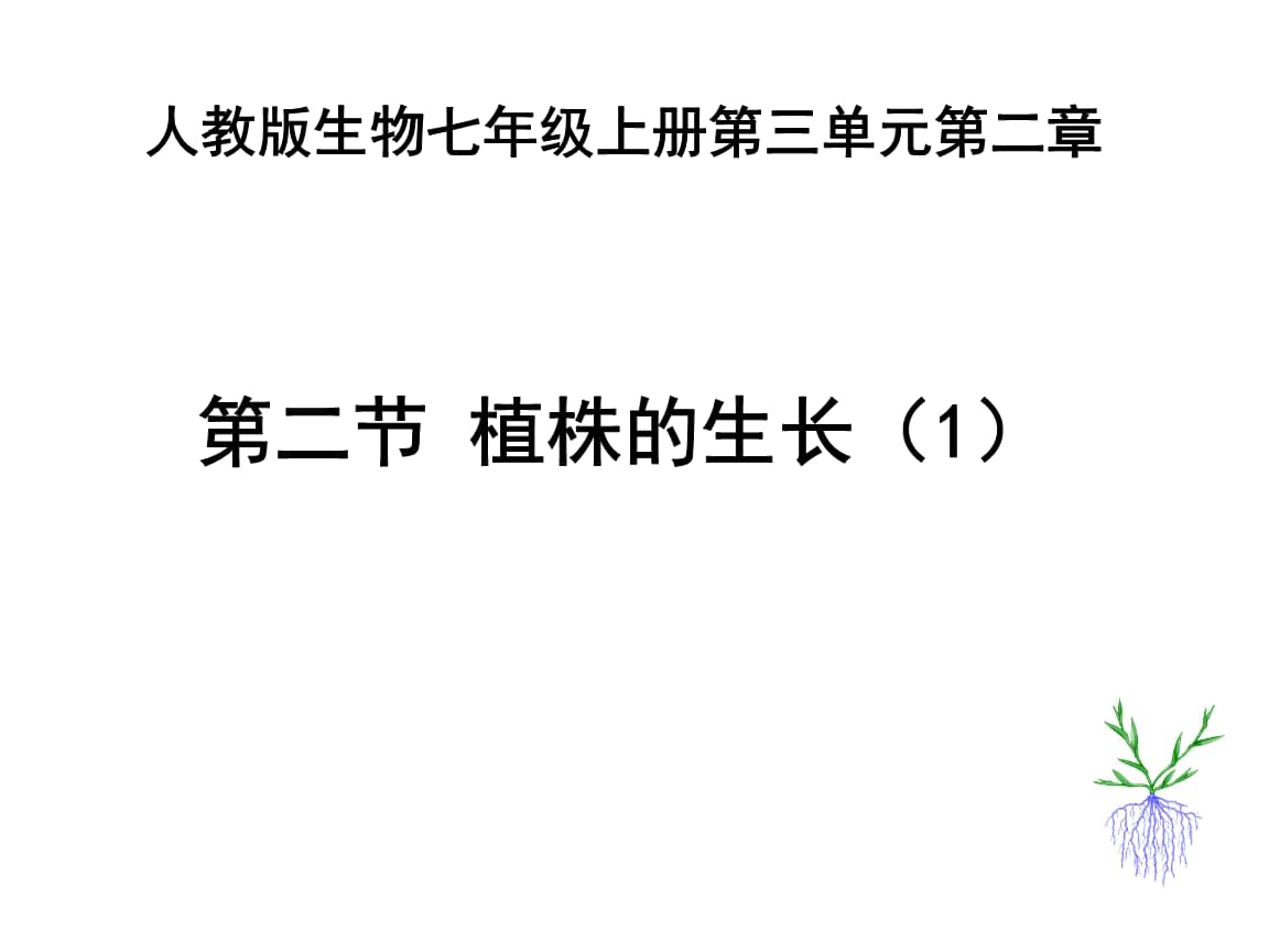 人教版七年级上册生物植株的生长 (2).ppt