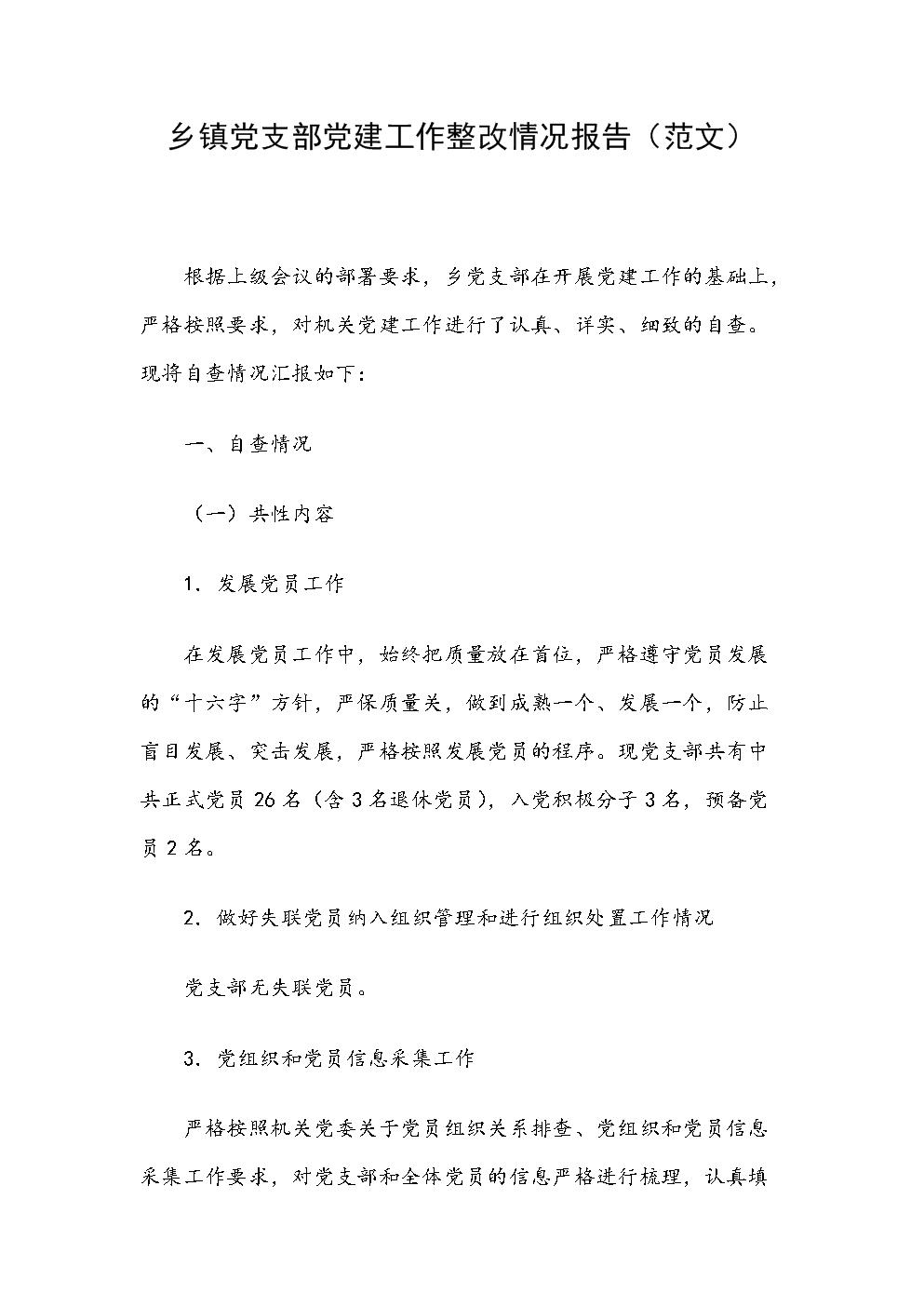 乡镇党支部党建工作整改情况报告(范文).docx