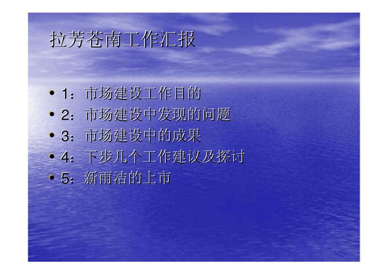 拉芳苍南工作汇报 公司机构.pdf