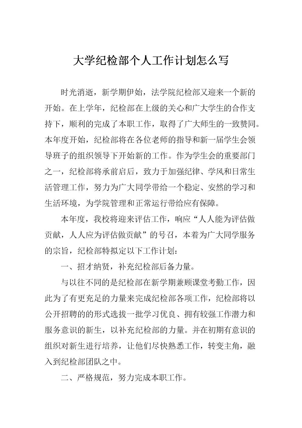 大学纪检部个人工作计划.doc