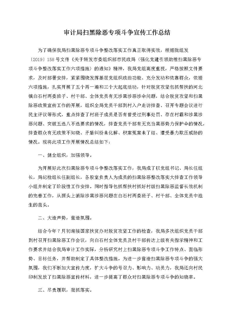 审计局扫黑除恶专项斗争宣传工作总结.docx