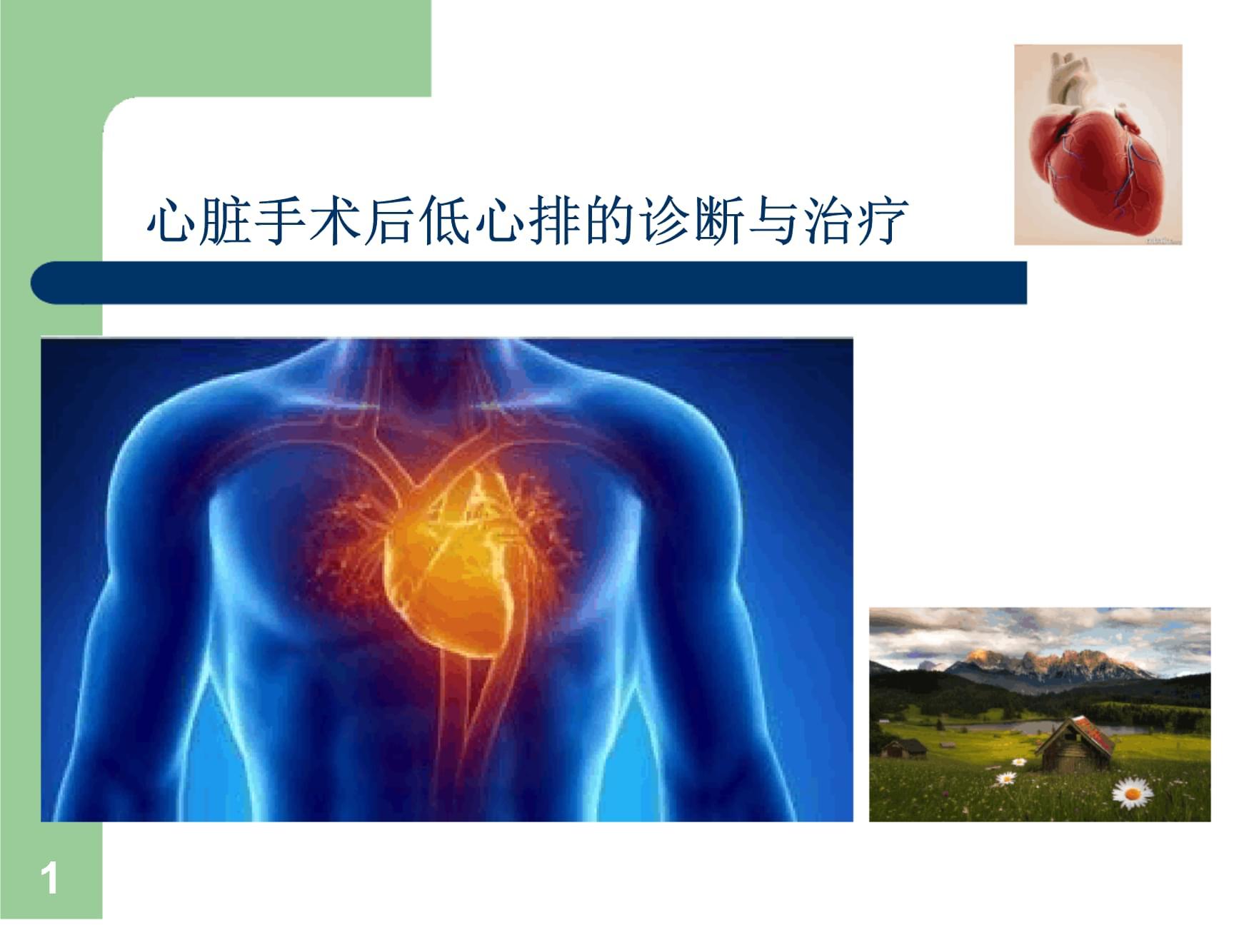 心脏手术后低心排的诊断与治疗PPT课件.ppt