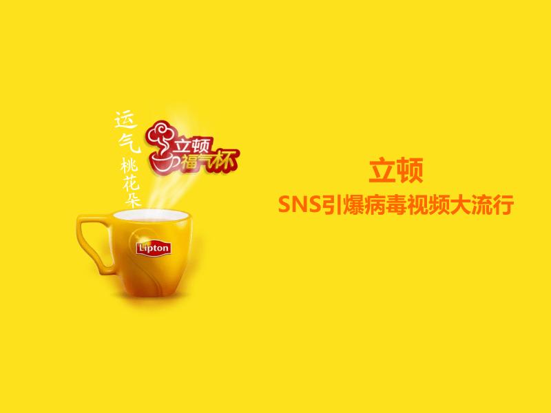 立顿红茶策划的网络营销方案.pdf