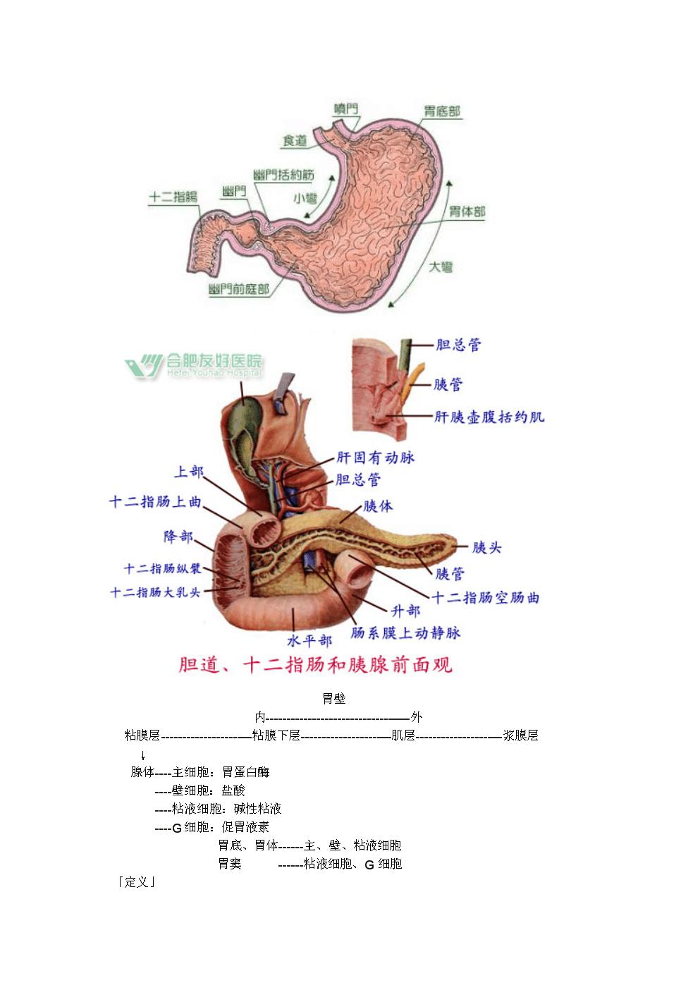 第二节-胃、十二指肠溃疡外科治疗病人的护理.doc