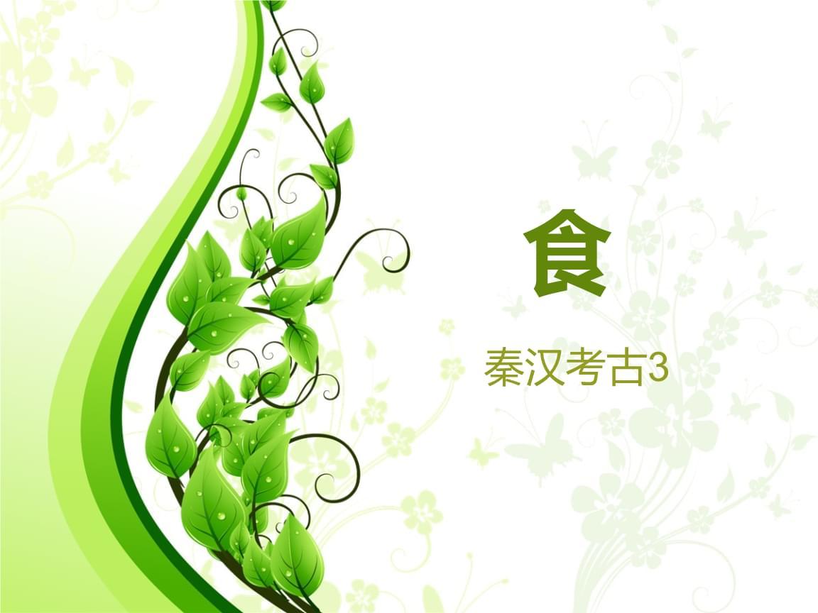 3.秦汉考古(食)概述.ppt
