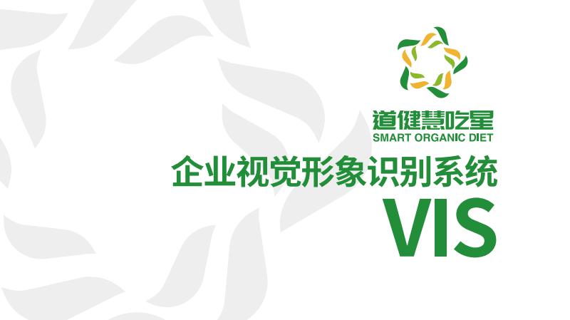 企业VI设计汇报文件(设计内容下载后可编辑,可当素材使用).pdf