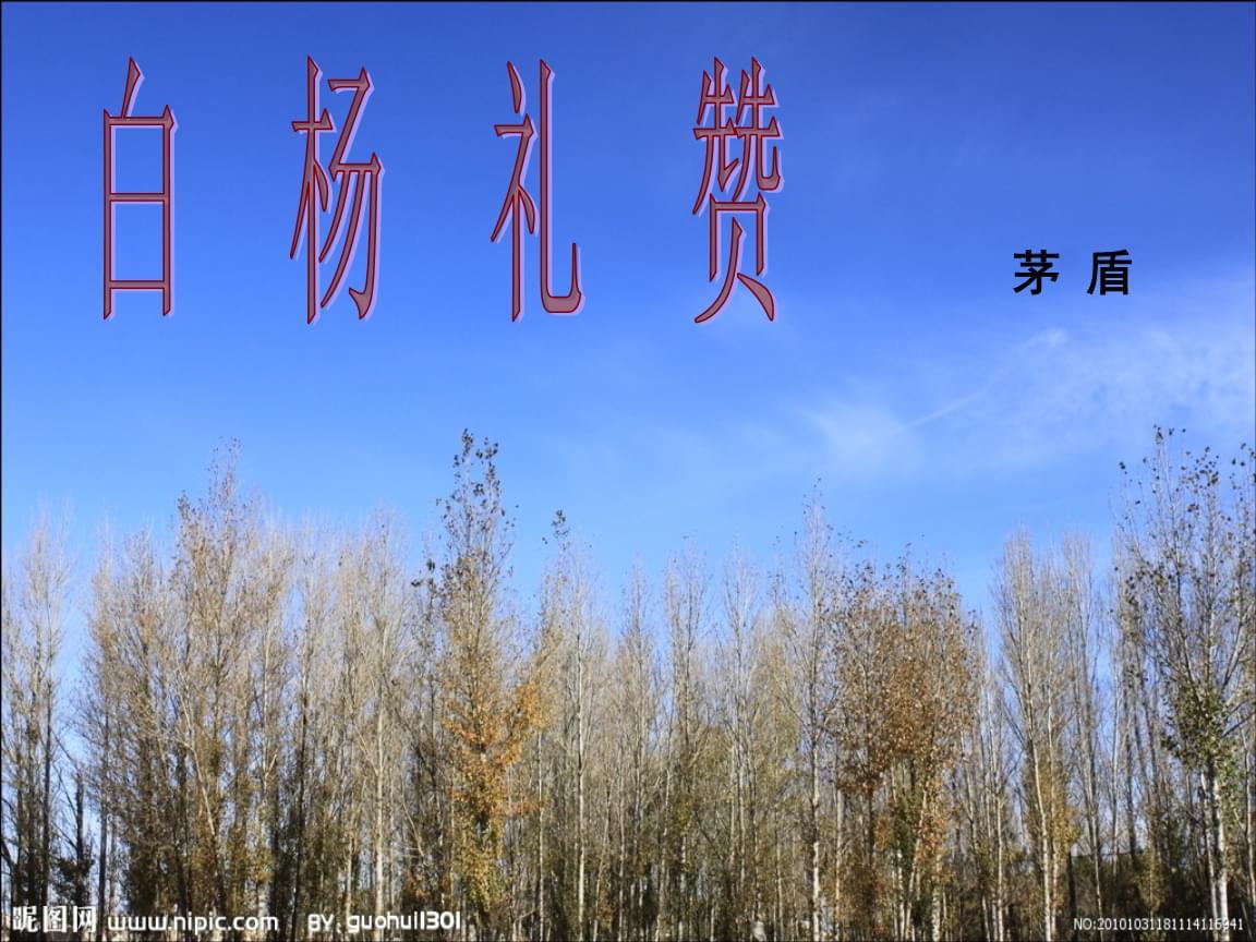 九年级的语文白杨礼赞1.ppt