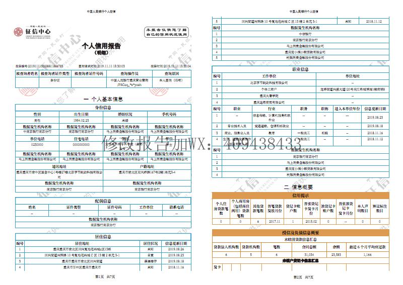 思源体个人征信报告模板2.pdf