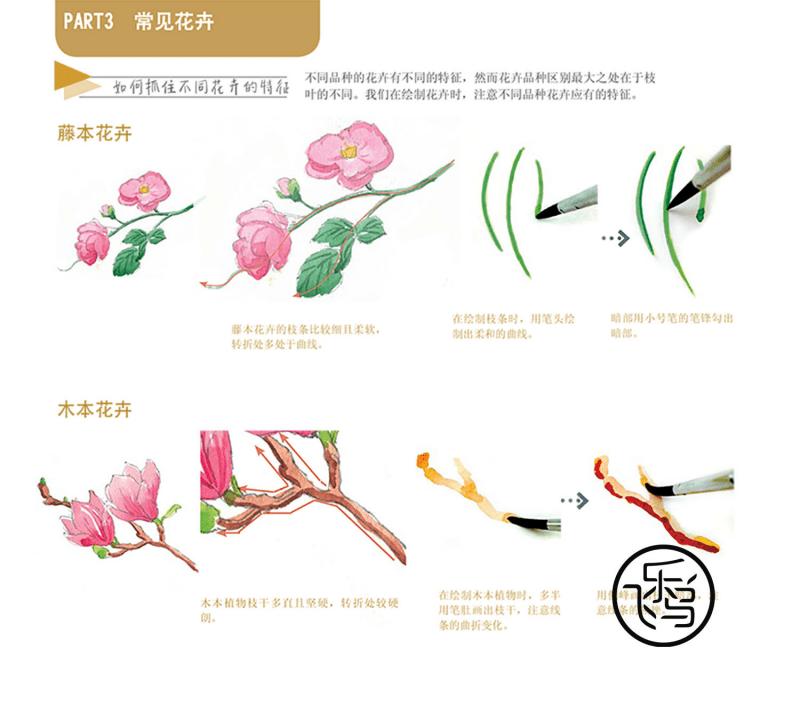 水彩花卉—84例教程 常见花卉.pdf