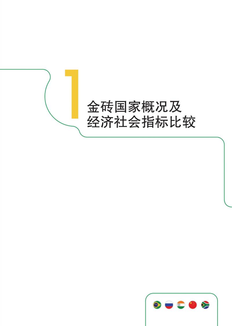 金砖国家联合统计手册2018.pdf