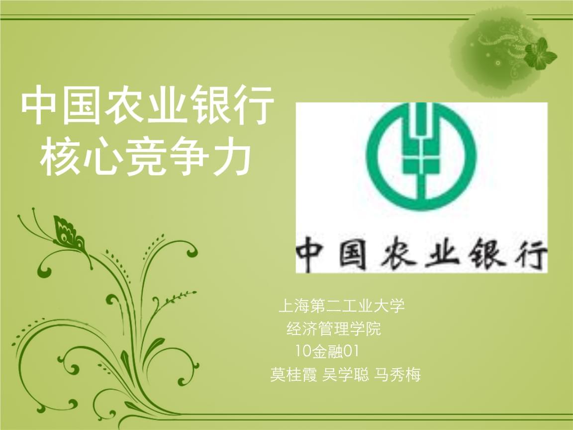 中国农业精品新银行核心竞争力(ppt 20页).ppt