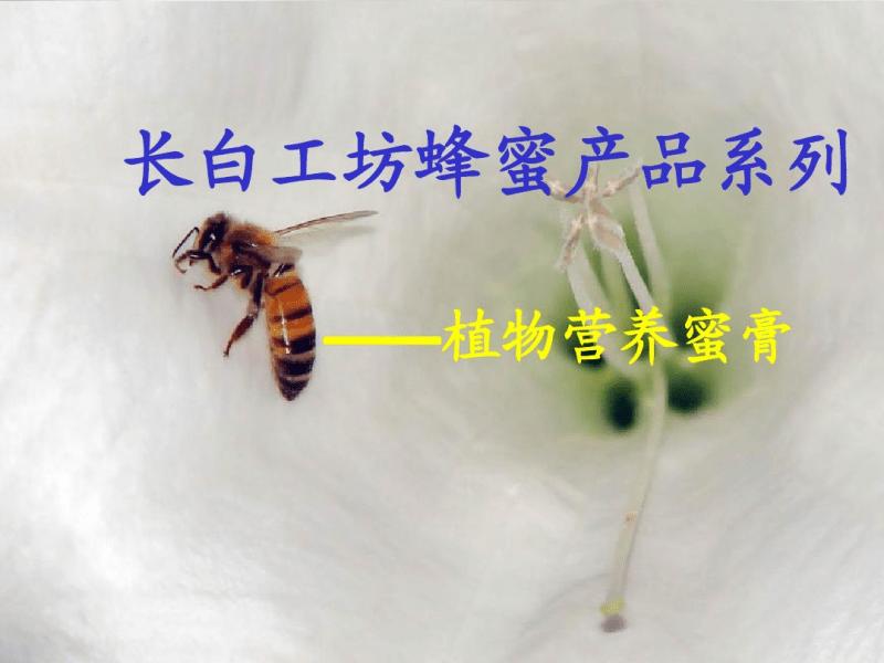 蜂蜜培训大全.pdf