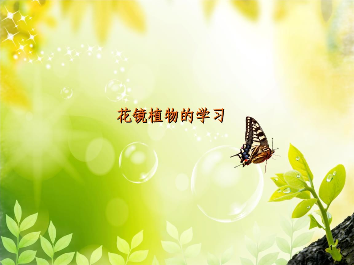 花镜植物的学习讲解.ppt