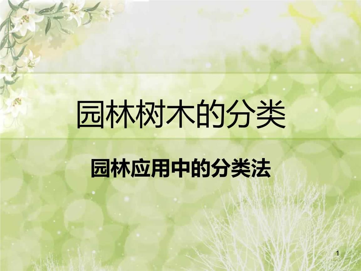 园林树木的分类介绍.ppt