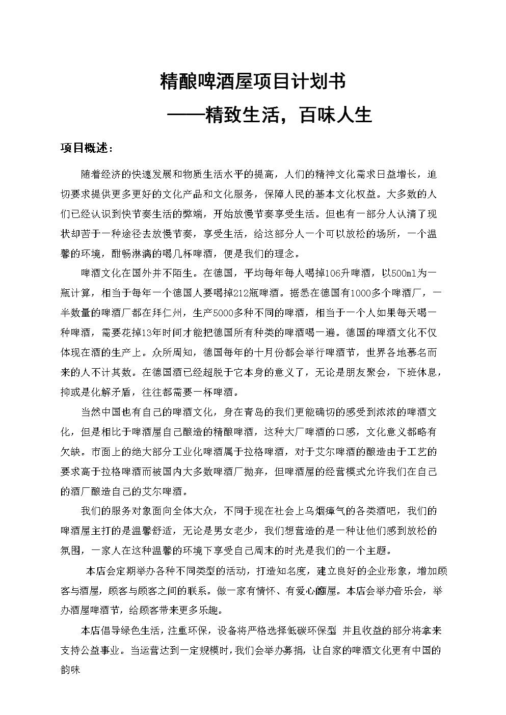 大学生创业精酿啤酒屋项目计划书.docx