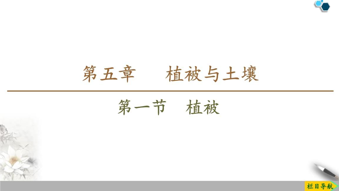 人教版高中地理必修一《植被》教学课件 (2).pptx