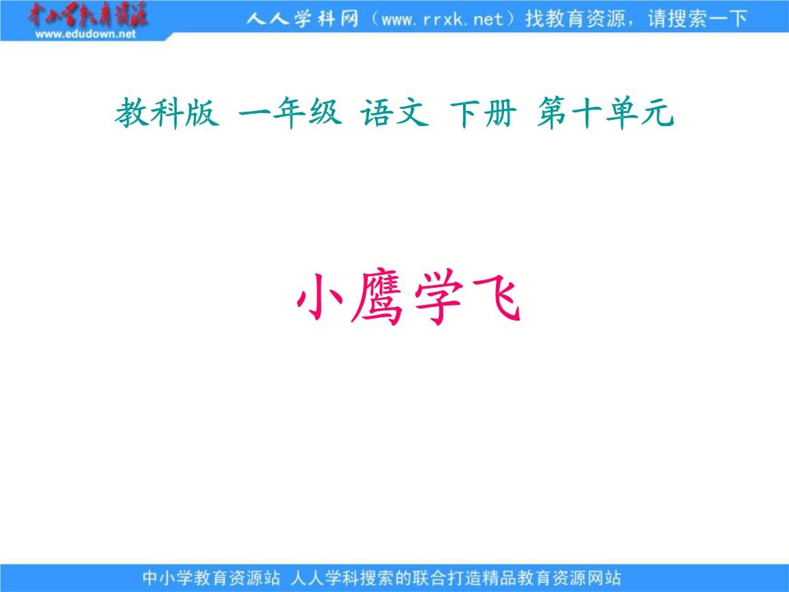 教科版一年级下册小鹰学飞课件1知识分享.ppt