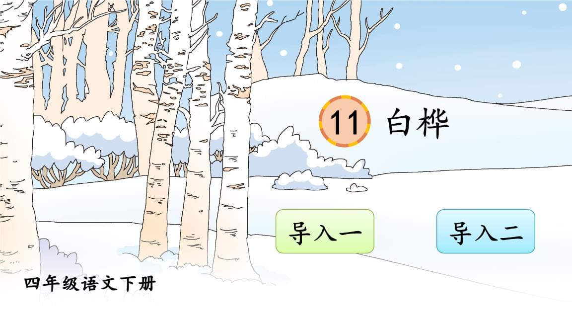 新部编本四年级下语文11白桦精美课件.ppt