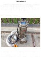 三相电潜水泵型号.pdf