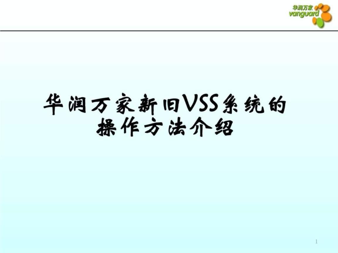 华润万家新旧VSS系统操作方法介绍.ppt