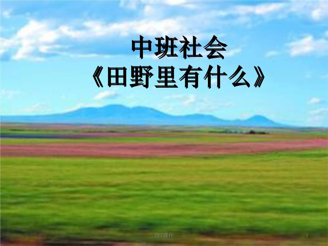 中班社会:田野里有什么.ppt