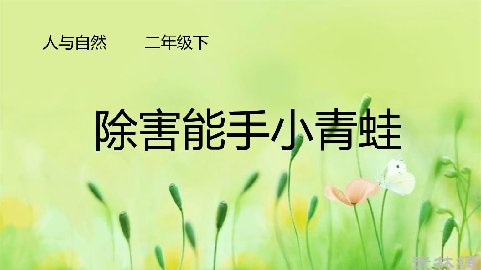 小学综合实践活动《会服务活动  2.争当集体劳动小能手》赛课课件_5.pptx