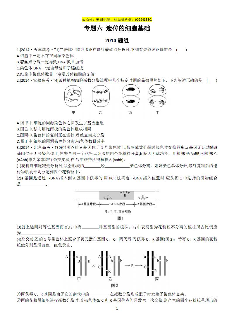专题六 遗传的细胞基础.pdf