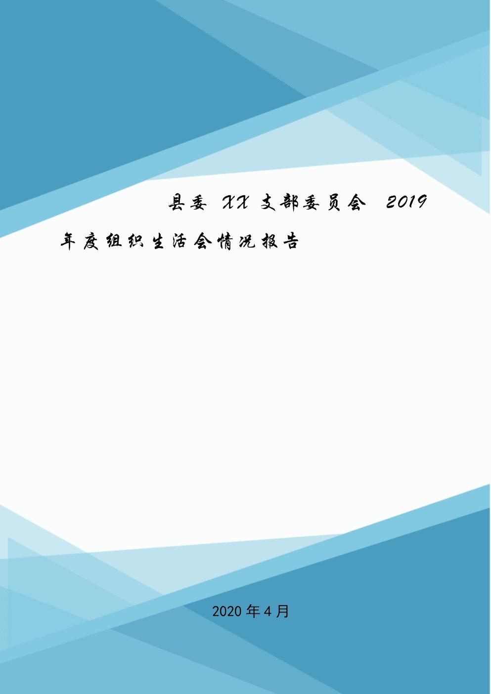 县委XX支部委员会2019年度组织生活会情况报告.doc