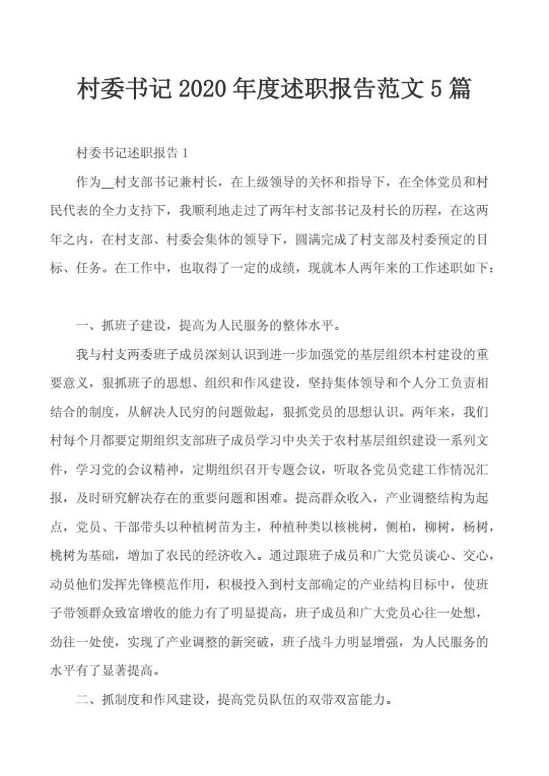 报告~村委书记2020年度述职报告范文5篇..pdf