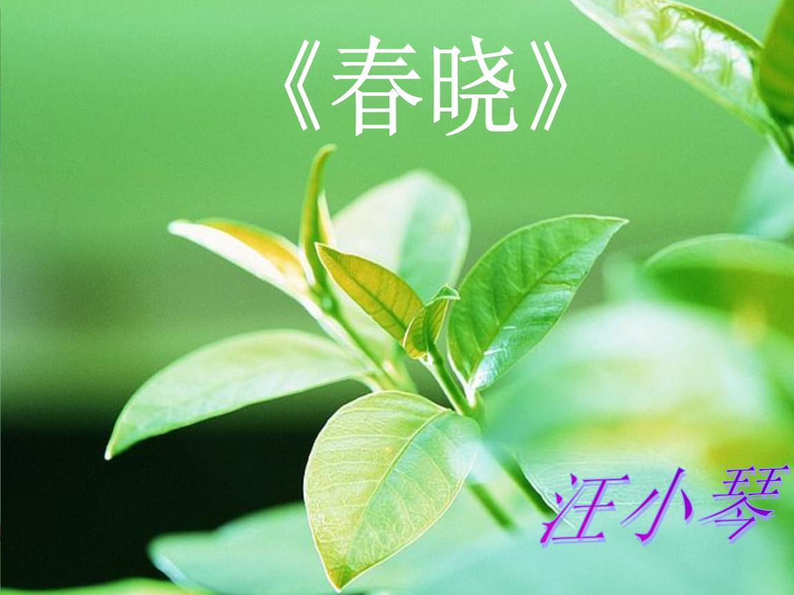 春晓_音乐教学 课件.ppt