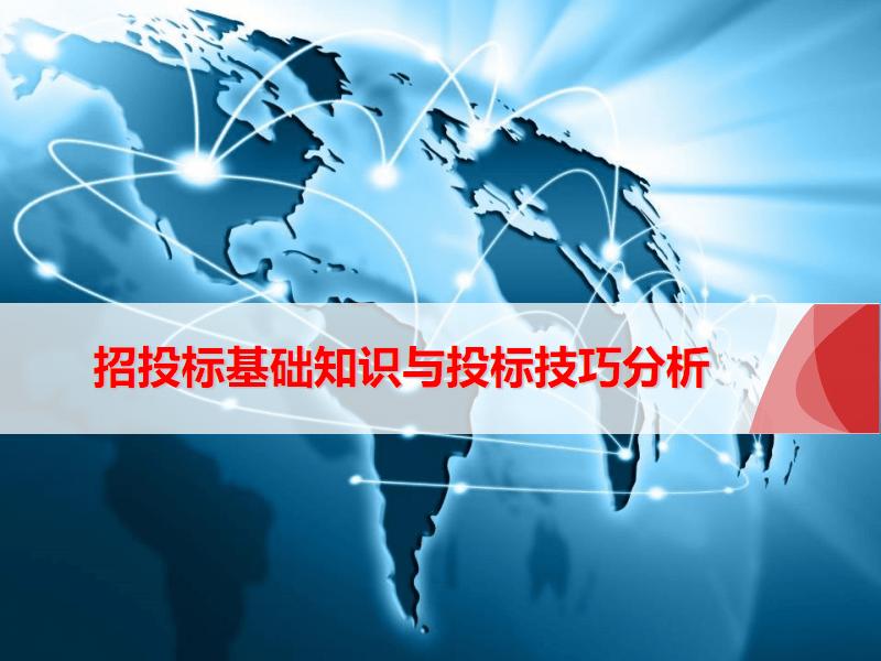 招投標基礎知識與投標技巧分析.pdf