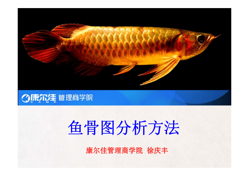 鱼骨图分析方法.pdf