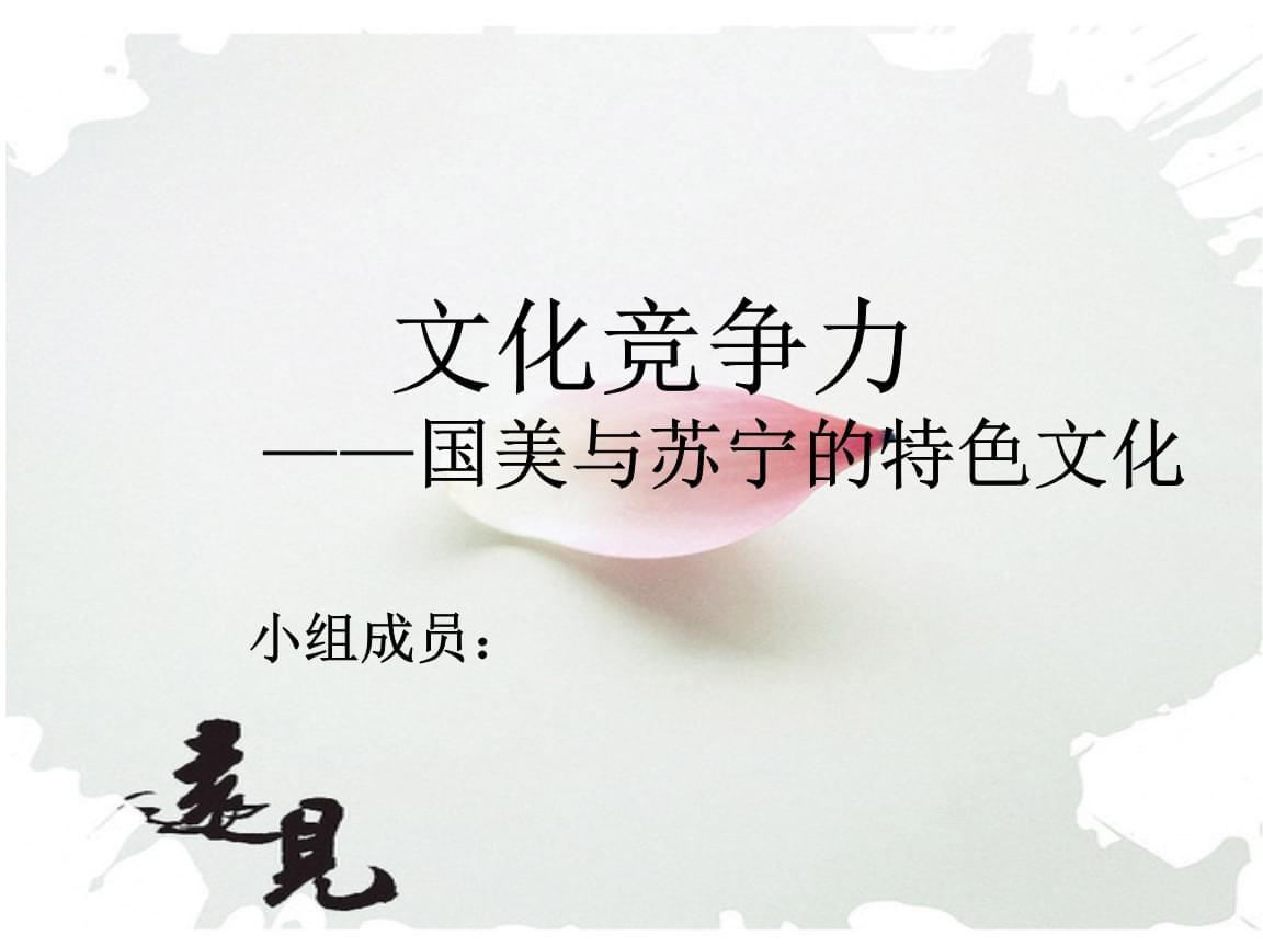 文化竞争力国美与苏宁的特色文化课程.pptx