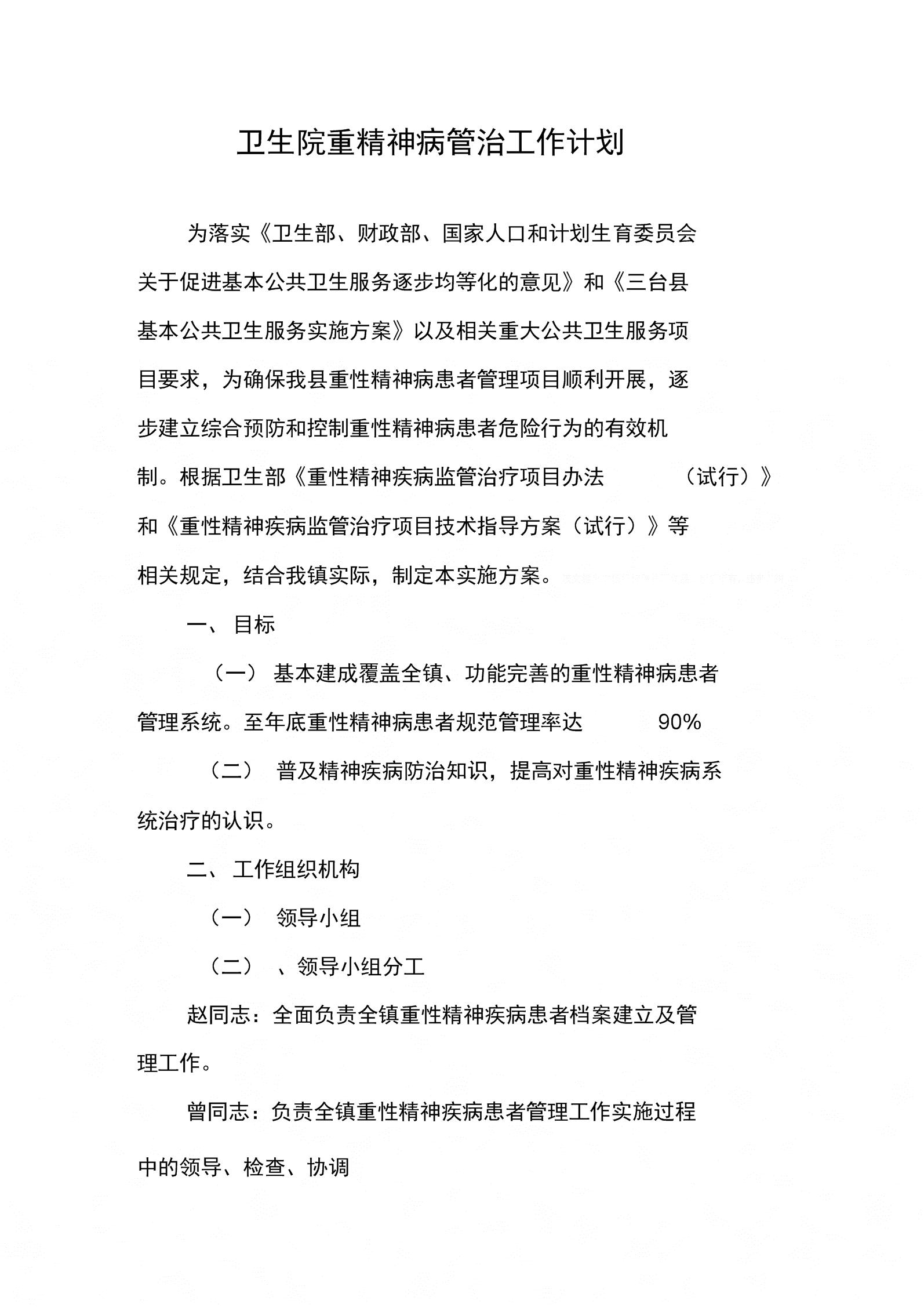 卫生院重精神病管治工作计划.docx