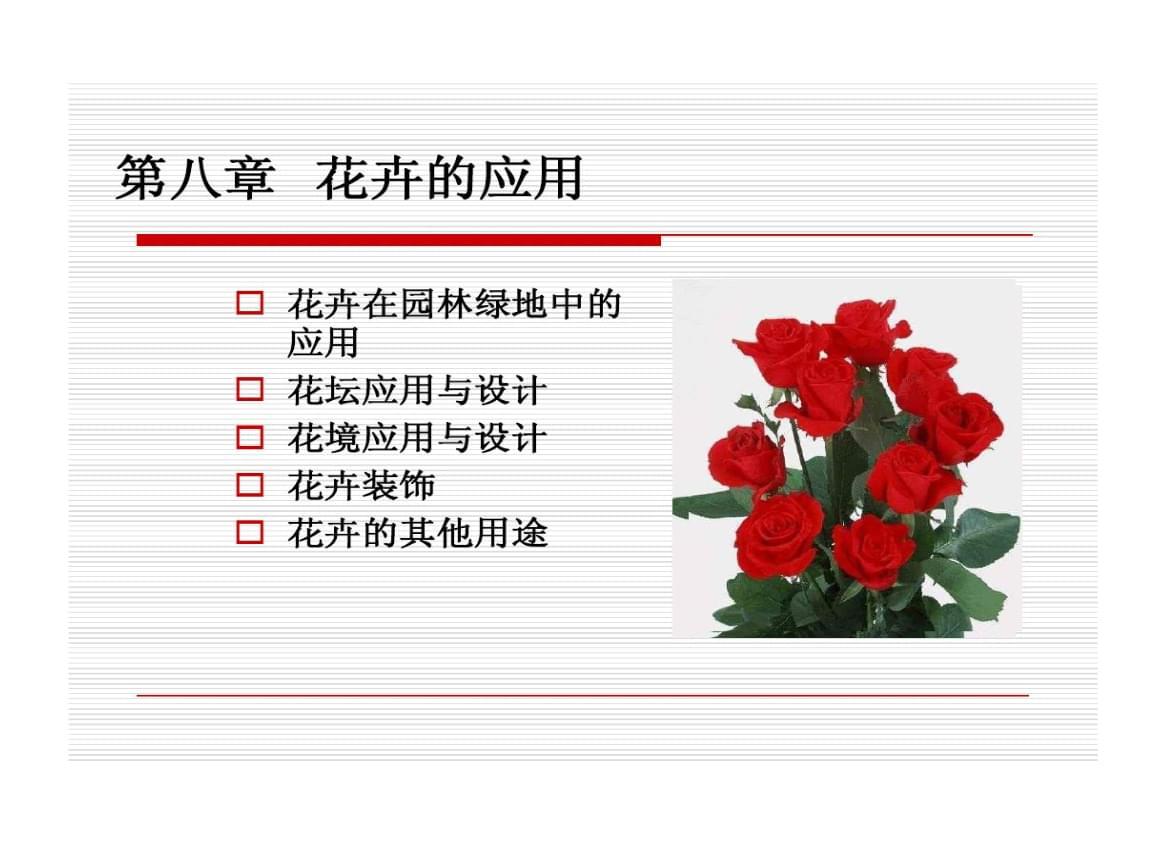 花卉室外应用.ppt